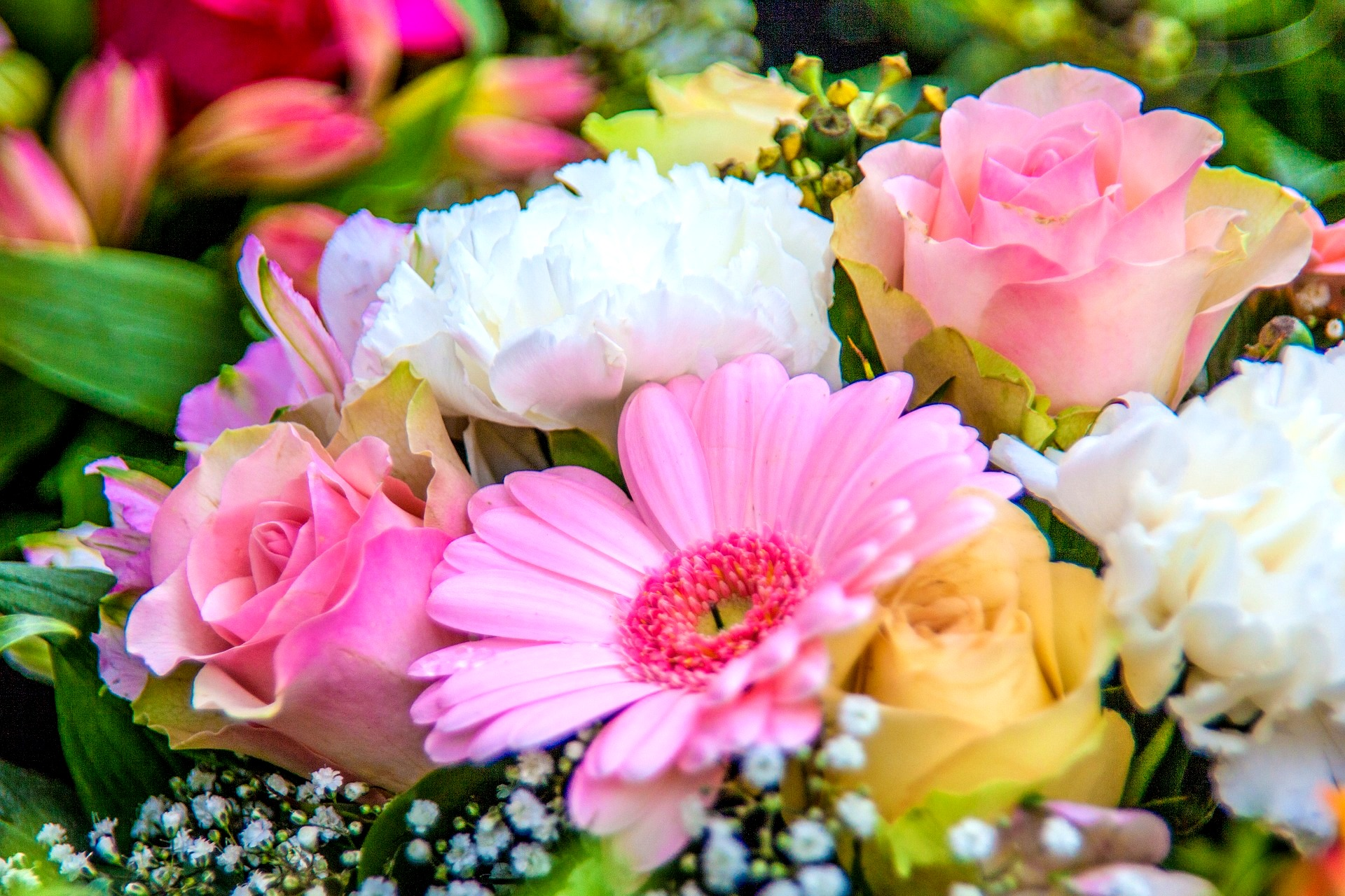 birth_month_flowers-primary-1920x1280px_pixabay.jpg